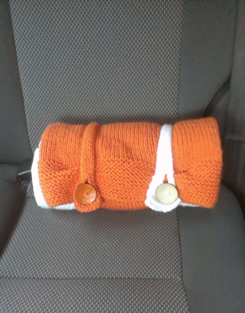 Fox-Blanket-Car