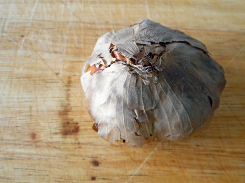 Black-Garlic-Bulb