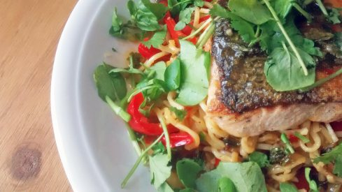 Salmon-and-Noodles-Close