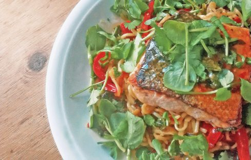 Salmon-and-Noodles-Plate