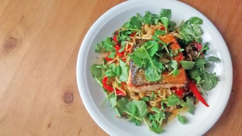 Salmon-and-Noodles