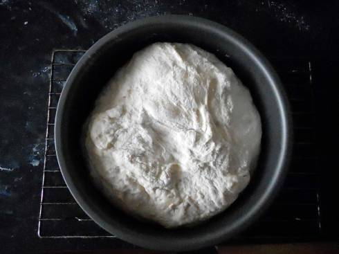 No-Knead-Unbaked